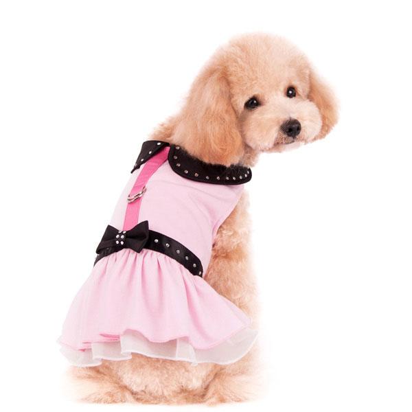 Sweet N Sassy Dog Dress At Glamourmutt