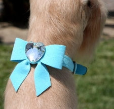 Tail Bow Heart Swarovski Crystal Dog Collar- 20 Colors