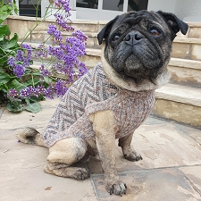 Vertical ZigZag Alpaca Dog Sweater
