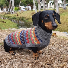 Alpaca Crossroads Dog Sweater