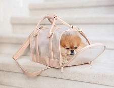 Vanderpump Mesh Pet Carrier- Blush
