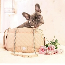 Vanderpump Quilted Classic Luxury Pet Carrier- Blush