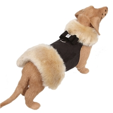 Big Bow Champagne Fur Dog Coat- Black