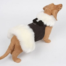 Big Bow White Fur Dog Coat- Black