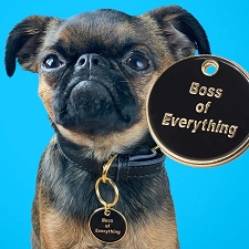 'Boss of Everything' Pet ID Tag