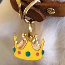 Crown Pet ID Tag by TrillPaws