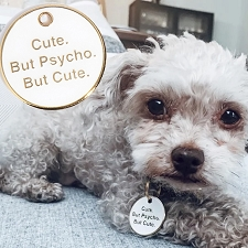 'Cute. But Psycho. But Cute.' Pet ID Tag