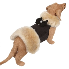 Nouveau Bow Champagne Fur Dog Coat- Black