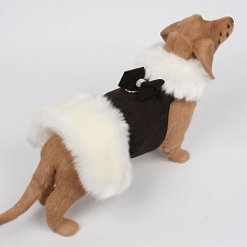 Nouveau Bow White Fox Fur Dog Coat- Black