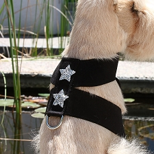 Rock Star Ultrasuede Dog Harness