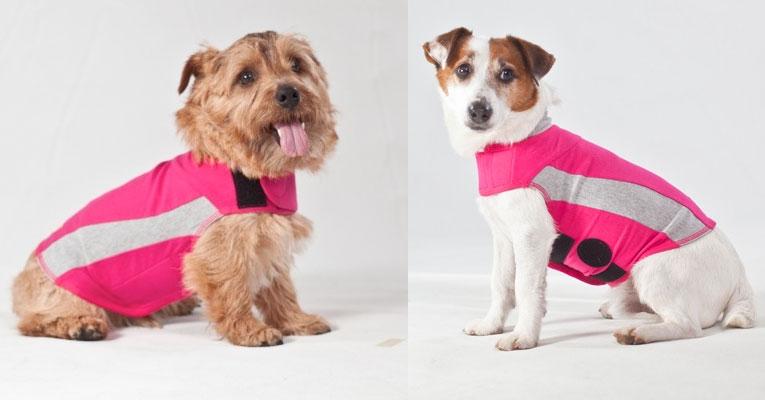 7fed10392775 Thundershirts Calming Anxiety Treatment Dog Shirts- Designer Dog ...