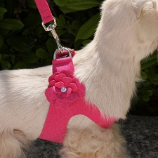 Tinkie's Garden Step-In Swarovski Crystal Dog Harness- 20 Colors