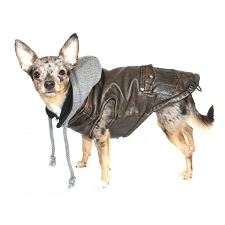 Vintage Bomber Dog Jacket with Removable Hood