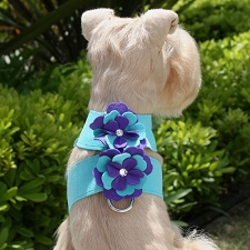 Violet Tinkie Harness by Susan Lanci