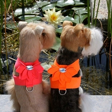 Water Lily Crystal Dog Harness by Susan Lanci- 10 Colors