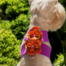 Wendy Tinkie Harness by Susan Lanci