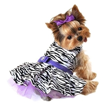 Wild Zebra Tutu Dog Dress