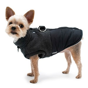 Midtown Runner Dog Coat