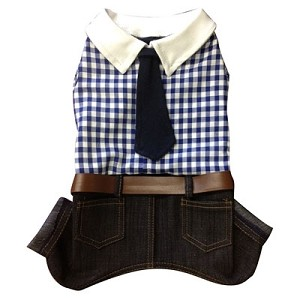 Archibald Gingham Dog Suit