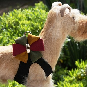 Autumn Pinwheel Step-In Dog Harness