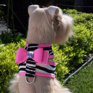Big Bow Crystal Two-Tone Dog Harness - Zebra and Perfect Pink