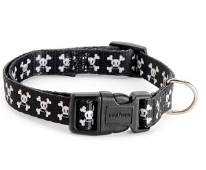 Black Skurvy Dog Collar by Paul Frank