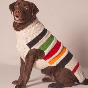 Blanket Rollneck Dog Sweater by Chilly Dog