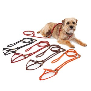 Braided Leather Step-In Dog Harness - 4 Colors