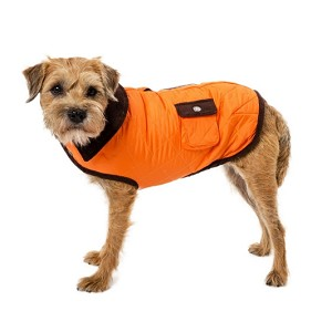 Barn Dog Coat- Orange