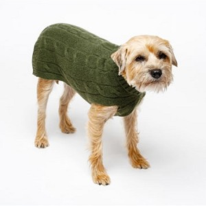Cashmere Dog Sweater- Green