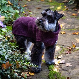 Cashmere Dog Sweater- Heather Burgundy