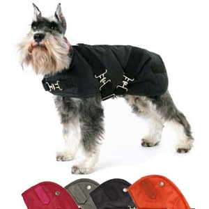 Solid Horse Blanket Dog Coat- 4 Colors