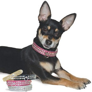Celebrity Rhinestone Studded Dog Collar - Silver, Gold, Pink, Black