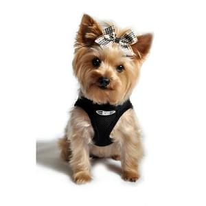 Choke Free Dog Harness- Black | Small Dog Harnesses at GlamourMutt