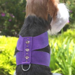 Swarovski Crystal Paws Dog Harness - 20 Colors