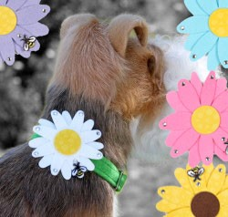 Daisy Collar Slider by Susan Lanci- 6 Colors