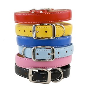 Dover Court Leather Dog Collar - Six Colors