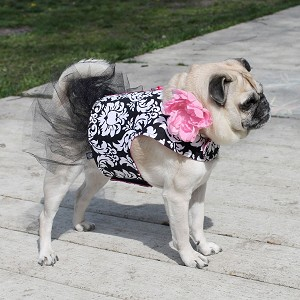Floral Damask Dog Tutu Dress