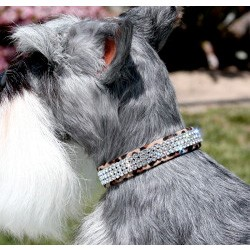 Giltmore Triple Row Swarovski Crystal Dog Collar - 20 Colors