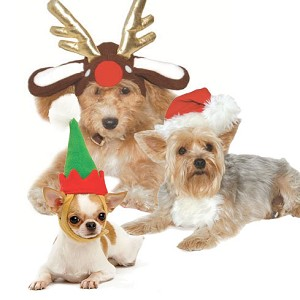Holiday Dog Hats- Reindeer, Santa, Elf