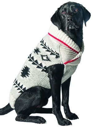 Jackson Shawl Dog Sweater by Chilly Dog