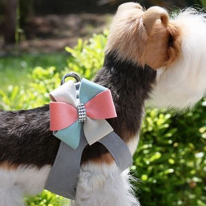 Julia Pinwheel Step-In Dog Harness