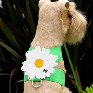 Jumbo Daisy Swarovski Crystal Dog Harness - 20 Colors