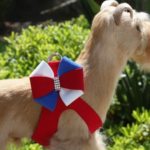Liberty Pinwheel Step-In Dog Harness