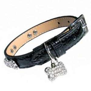 Crystal Bones Leather Dog Collar - Midnight Black