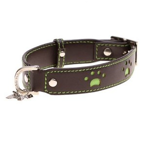 Posh Paws Leather Dog Collar - Brown and Lime