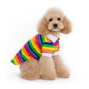 Rainbow Dog Polo