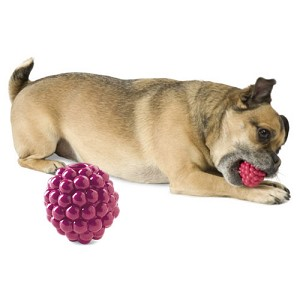 Raspberry Vitamin-Infused Toy