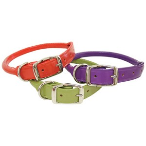 Rolled Leather Dog Collars - Nouveau Colors