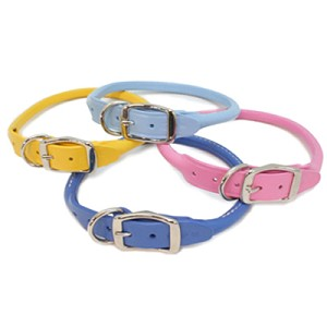 Rolled Leather Dog Collars - Spring Colors